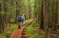 Top Hiking Trails Across the World