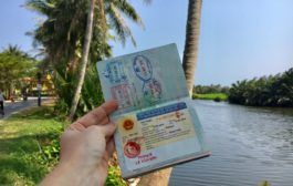 2 Week, E-Visa, 3 Month, Multiple Entry and a lot of