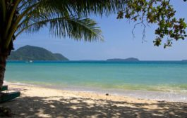 7 Surprising Things You Can See and Do in Phuket